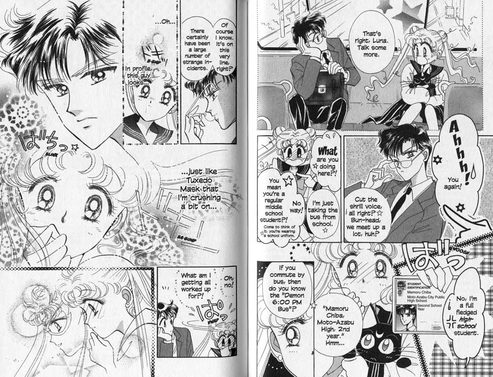 Mamoru and Usagi Vol 1