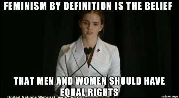 Feminism Meme