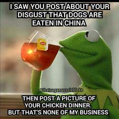 Vegetarian meme2